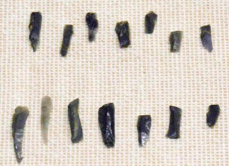 旧石器時代 細石刃