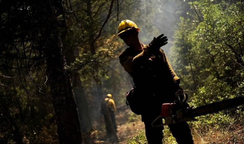 firefighter-86005_1280